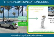 nlp communication model nlp training miami